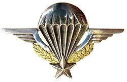 brevet parachutiste de l'armée française