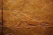 British Museum Room 10 lion hunting.jpg