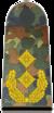 Bundeswehr-OF-7-GM.png