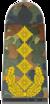 Bundeswehr-OF-9-Gen.png