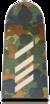 Bundeswehr-OR-4-SG.png