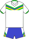 Canberra Raiders away jersey 2012.png