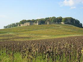 Ruines du château d'Arlay (XIIIe s)