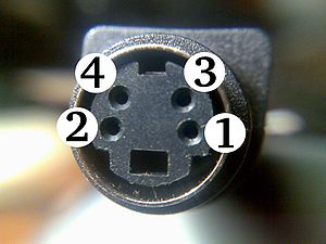 Close-up of S-video female connector.jpg