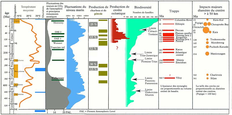 Cycles des extinctions massives