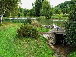 L'étang du Moulin blanc sur la Crempsoulie à Bourgnac.