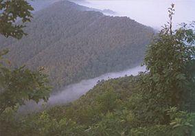Cumberland Gap foggy.jpg