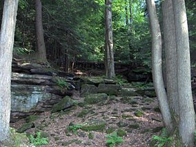Cuyahoga Valley National Park.jpg
