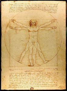 Canon de Leonardo da Vinci.
