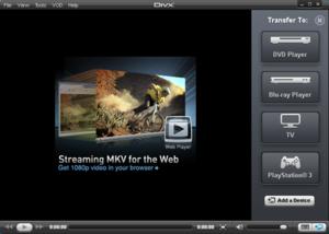 DivX Plus Player interface