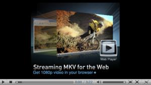 DivX Plus Web Player interface