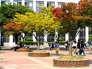 Students' square in front of the Humanities building