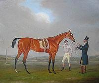Eleanor horse.jpg