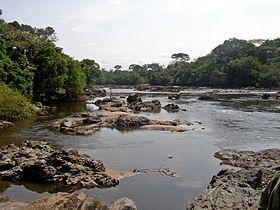 Epulu Okapi Reserve.jpg