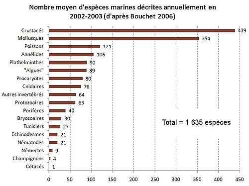 Espèces marines décrites annuellement.jpg