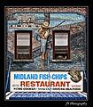 Fishing in Midland Harbour.jpg