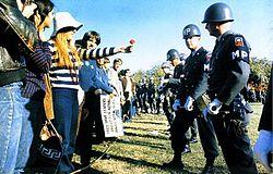 Le 21 octobre 1967, lors de la grande marche sur le Pentagone pour protester contre la guerre du Viêt Nam, une manifestante offre une fleur à un militaire