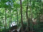 Fort Ben - Fall Creek Boardwalk.jpg