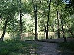 Fourteen Mile Creek waterfront.jpg