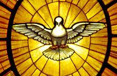 Gian Lorenzo Bernini - Dove of the Holy Spirit.JPG
