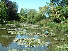 Giverny nympheas.jpg