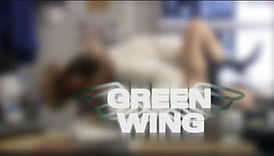 Green Wing Title