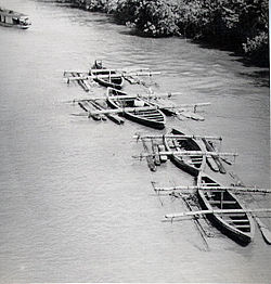 Hardwood logs transported down river.jpg