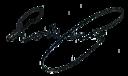 Henri Poincaré's signature.png