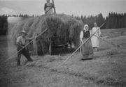old black-and-white photo of hay wagon