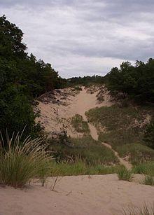 Hoffmaster parabolic dune.jpg