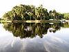Hontoon Island State Park St. Johns River.JPG