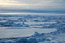 Ice fields.jpg