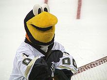 Photographie de la mascotte des Penguins portant le numéro 00.
