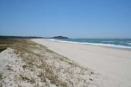 Iluka Beach.jpg