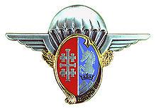 Insigne régimentaire du 1er régiment de hussards parachutistes.jpg