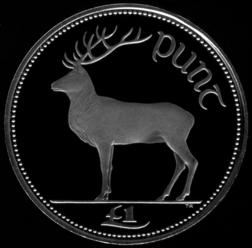 £1 coin (reverse) Red deer