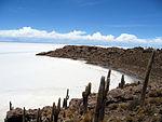 Isla de Pescado Bolivia Salar de Uyuni 2.jpg