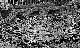 A mass grave, with multiple corpses visible