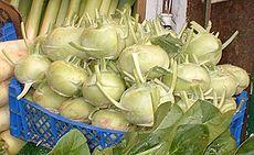 Brassica oleracea var. gongylodes