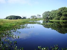 Lagoa Saraiva localizada no Parque Nacional de Ilha Grande.jpg