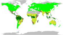 The biomes occupied by Fabaceae