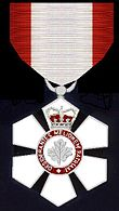 The insignia of a Companion of the Order of Canada