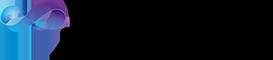 Logo VSE2010.png