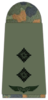 Luftwaffe-221-Oberleutnant.png