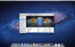 Mac OSX Lion screen.png