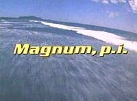 Magnum P.I..jpg