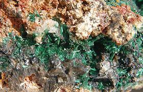Cristaux de malachite; taille de la vue 3 cm, taille des cristaux 2-3 mm, Congo