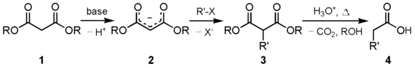 Malonic synthesis