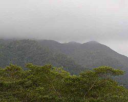 Maya mtns fog.JPG