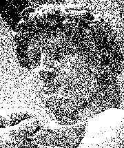 Michelangelo's David - ruis.png
